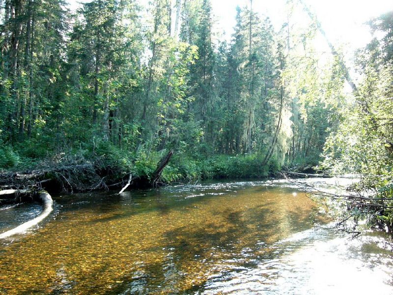 Нерская река