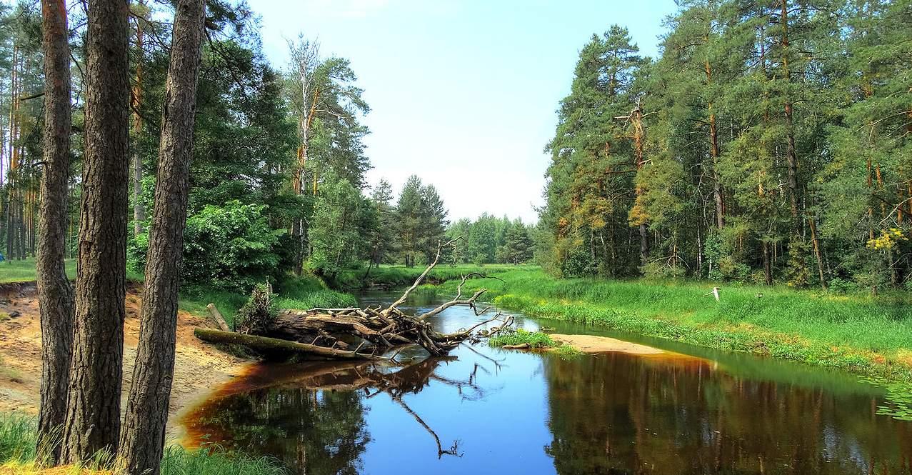 Нерская река 2