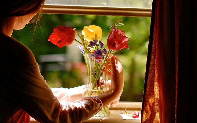 Цветы на подоконнике