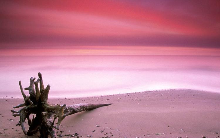 Розовый пляж, остров Харбор