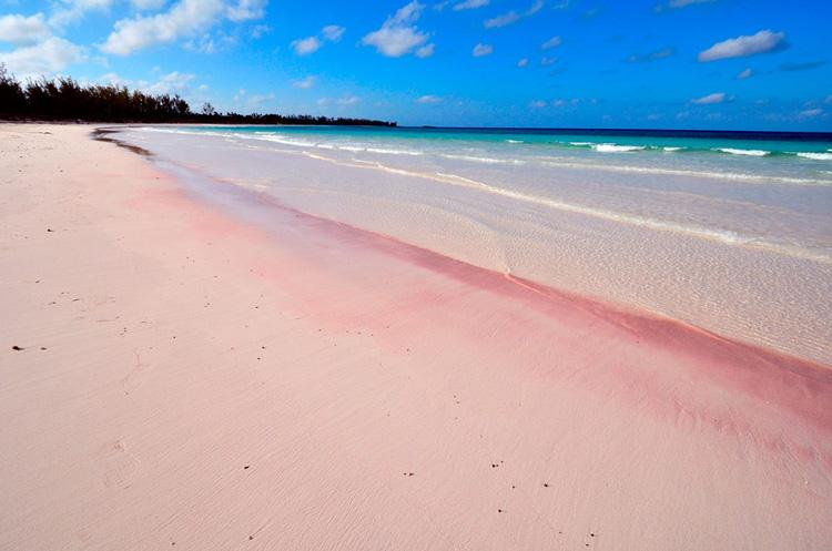 Розовый пляж, остров Харбор 3