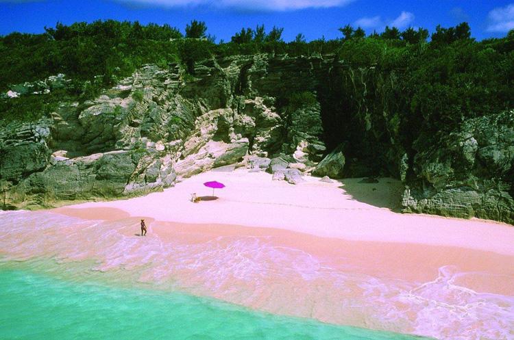 Розовый пляж, остров Харбор 4
