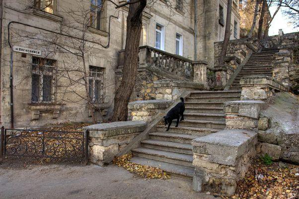 Севастополь Старая лестница