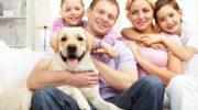 Собака для детей: лучшие породы, как выбрать
