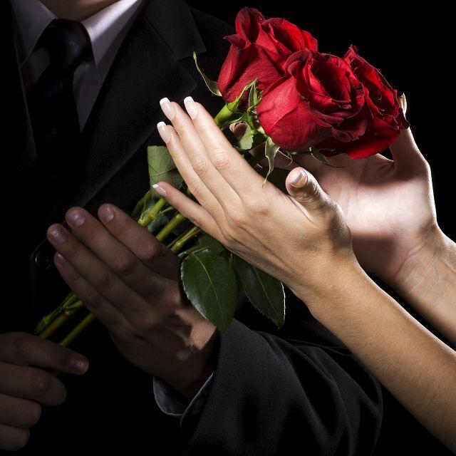 Прекрасные розы в подарок
